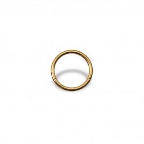 (13) Segment Ring Clicker Egaal - Edelstaal Goudkleurig - Dikte 1 mm / Ø 8 mm