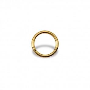 (16) Segment Ring Clicker Egaal - Edelstaal Goudkleurig - Dikte 1,2 mm / Ø 8 mm