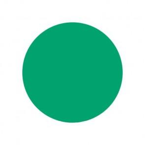 Eternal Ink - Seasonal Spectrum - Coral Green - 30 ml