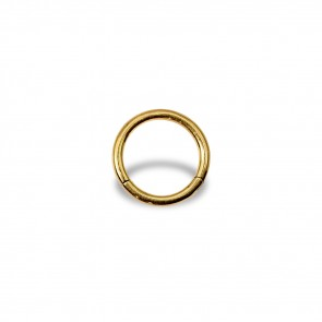 (16) Segment Ring Clicker Egaal - Stainless Steel Gold-coloured - Thickness 1.2 mm / Ø 8 mm