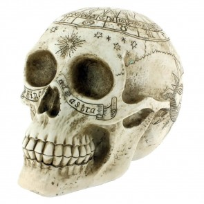 Astrological Skull - 20 cm